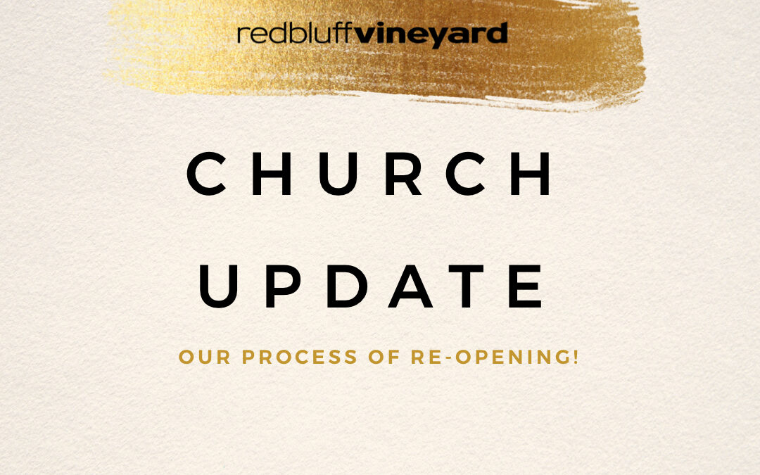 Vineyard Update (June 1, 2020)